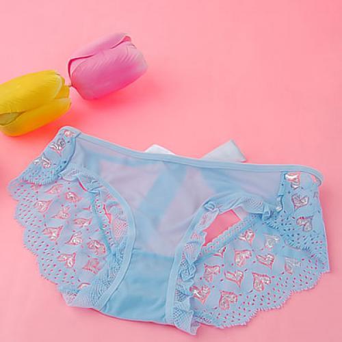 Sexy Light Blue Soft Mesh Embroidery Ribbon Trim Sleepwear Knickers 771#