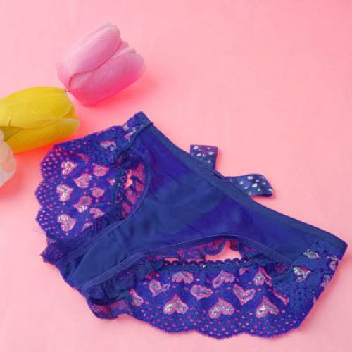 Sexy Purplish Blue Soft Mesh Embroidery Ribbon Trim Sleepwear Knickers 771#