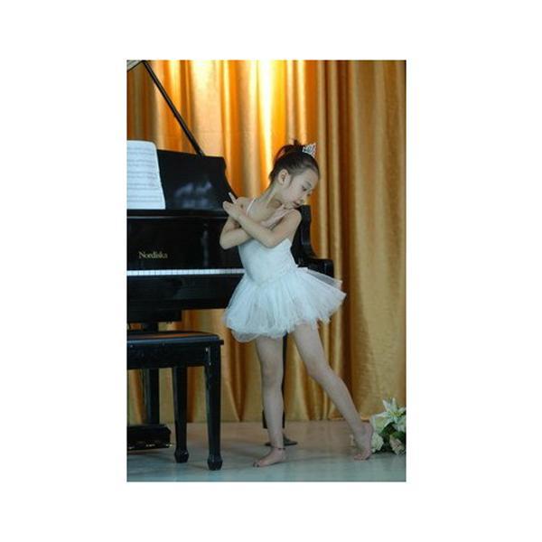 Girls Fairy Dress Ballet Tutu Leotard 6-7T - White
