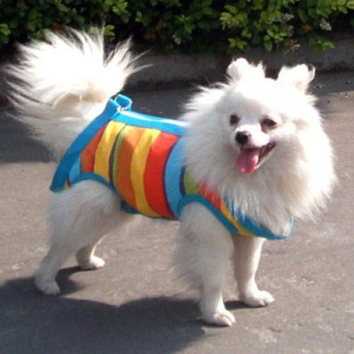 3 in 1 Multi-function Pet Dog Cat Coat Apparel Leash Harness Carrier Bag L