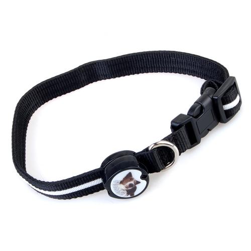 Green LED Flashing Light Dog Pet Nylon Safety Collar
