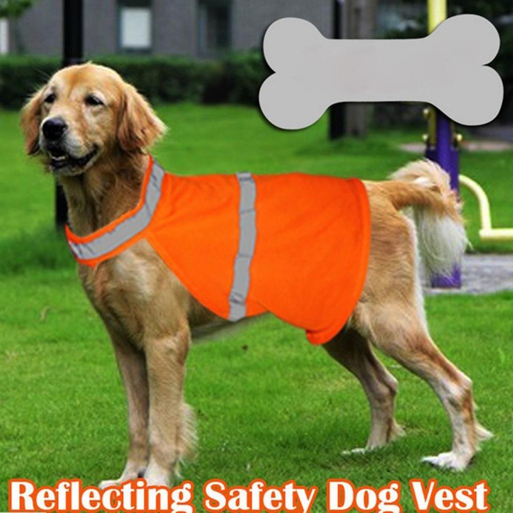 Pet High Visibility Safety Vest Orange - L