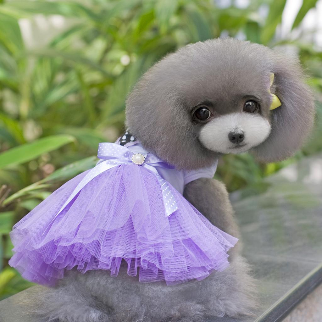 Cute Puppy Pet Dog Dress Lace Skirt Princess Dress Small Medium Dog Purple S