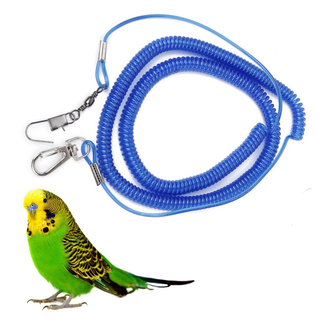 Parrot Bird Leash Kits Anti-bite Flying Training Rope for Agapornis fischeri - Random Color