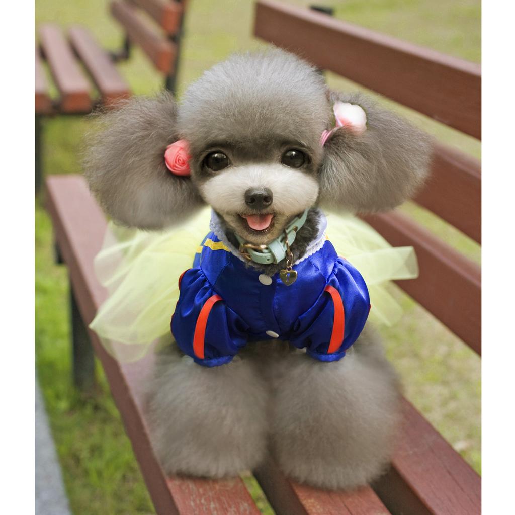 Pet Dog Snow White Disney Halloween Dress Costume Outfit Princess Clothes M