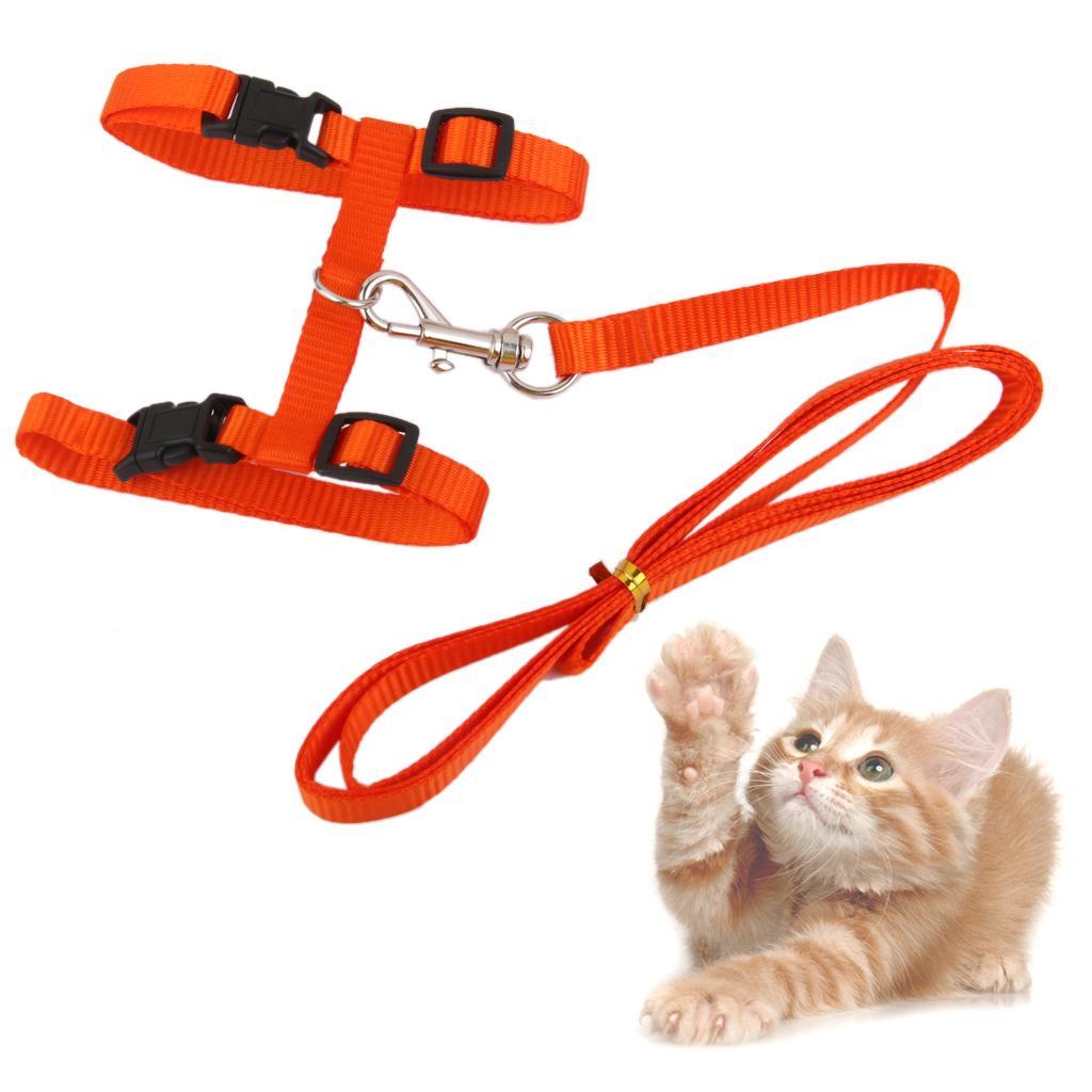 Adjustable Pet Cat Belt Nylon Lead Leash Collar Harness Safety Strap Orange