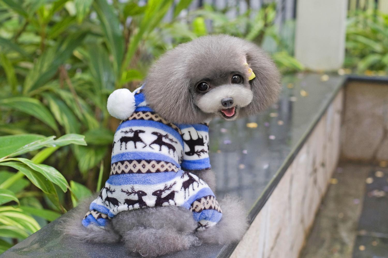 Classic Christmas Deer Pattern Warm Fleece Jumpsuits Coat for Pet Dog Size S