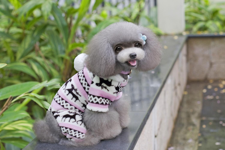 Christmas Deer Pattern Warm Fleece Jumpsuits Coat for Pet Dog Size XL Pink