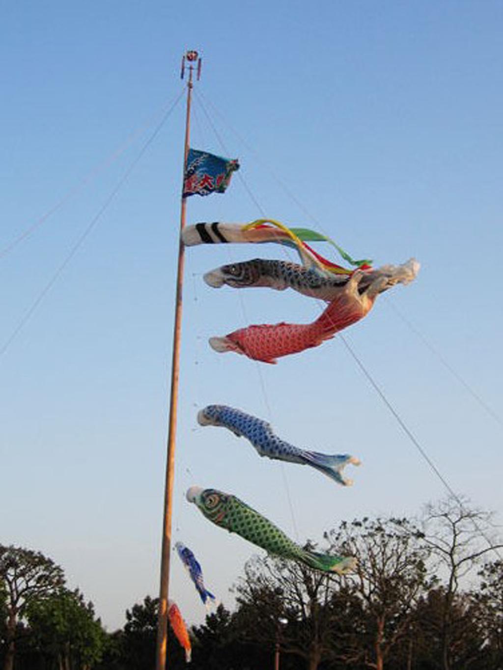 55cm blue japanese windsock carp flag koi nobori sailfish for Japanese flag koi