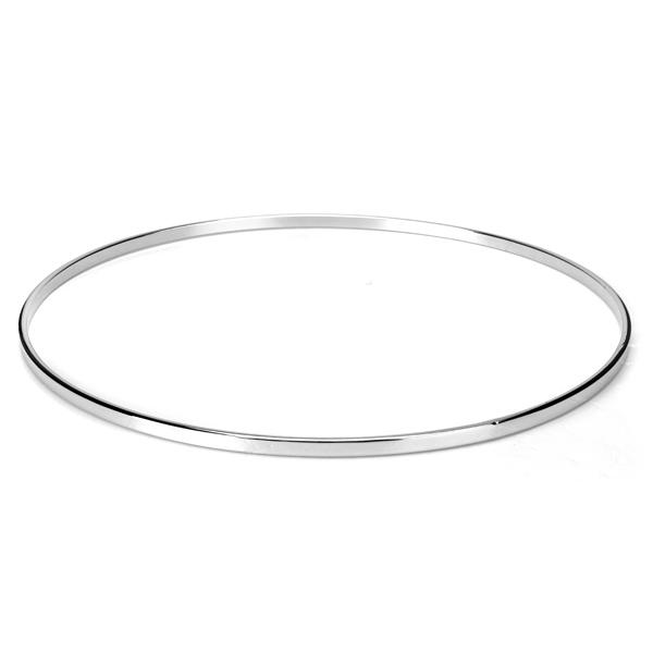 Stainless Steel Banjo Tone Ring