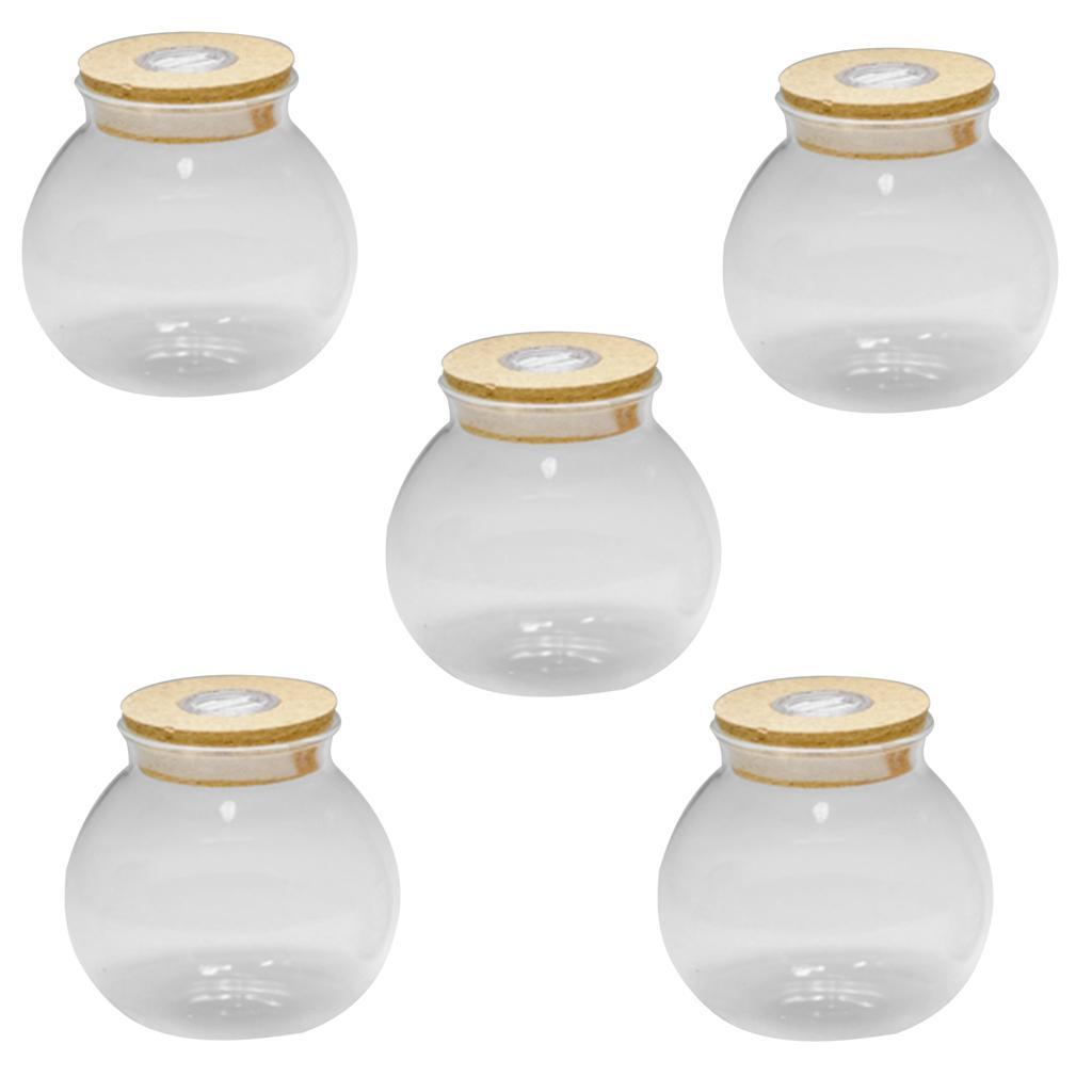 5Pcs 10cm Bottle Jar Hydroponic Terrarium Container Glow LED Light Cork Stopper