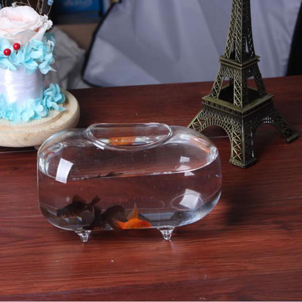 Oval Transparent Crystal Glass Aquariuml 18cm Clear Vase Fish Tank Water Jar