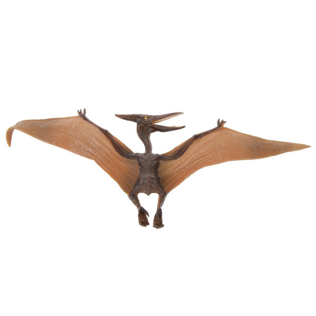 Realistic Cretaceous Pterodactylus Model Action Figure Kids Toy Collections