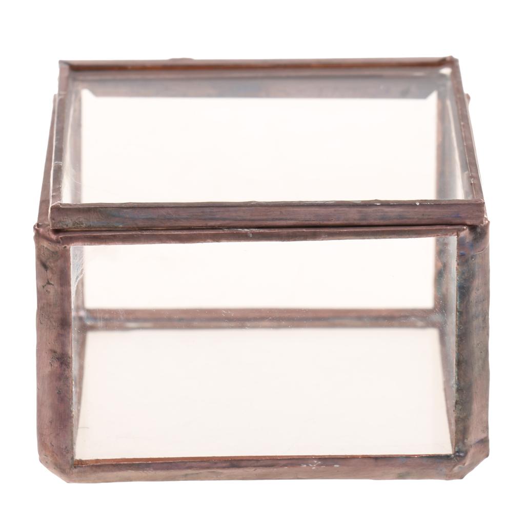 Geometric Glass Jewelry Box Tabletop Terrarium Plant Succulent Planter Box S