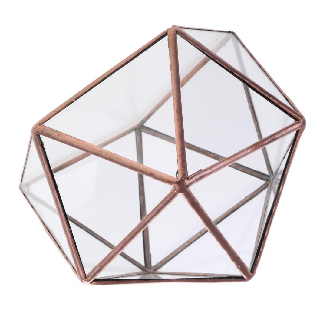 Clear Glass Geometric Terrarium Box Plant Planter 15 x 15 x 15cm Copper